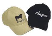 Angus-lippalakki